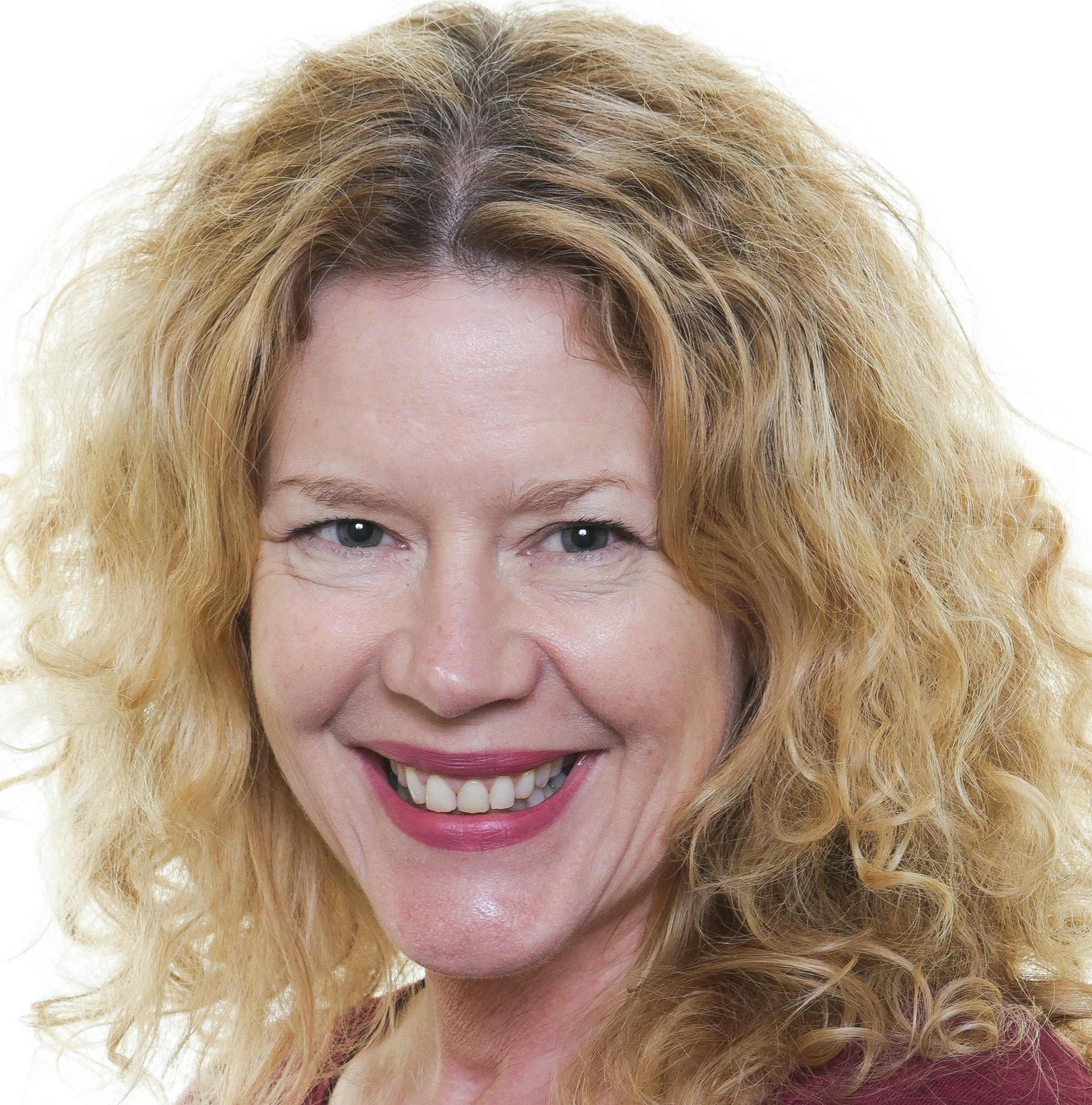 Sally Reynolds, West Ward: Independent (Vice-Chairman)